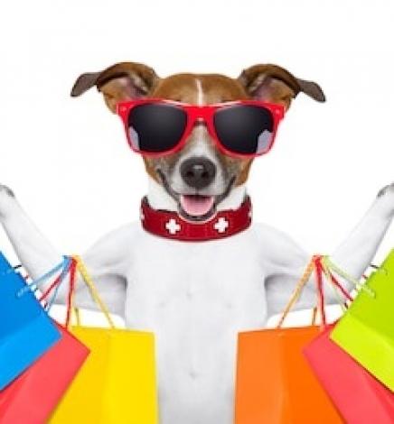 The dog who shopped