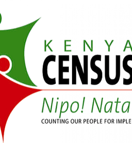 Human factor: The weak link in technology use in Kenyan Census