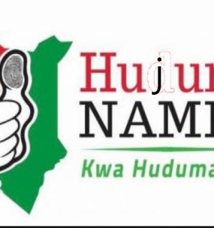 The Huduma Namba Mess